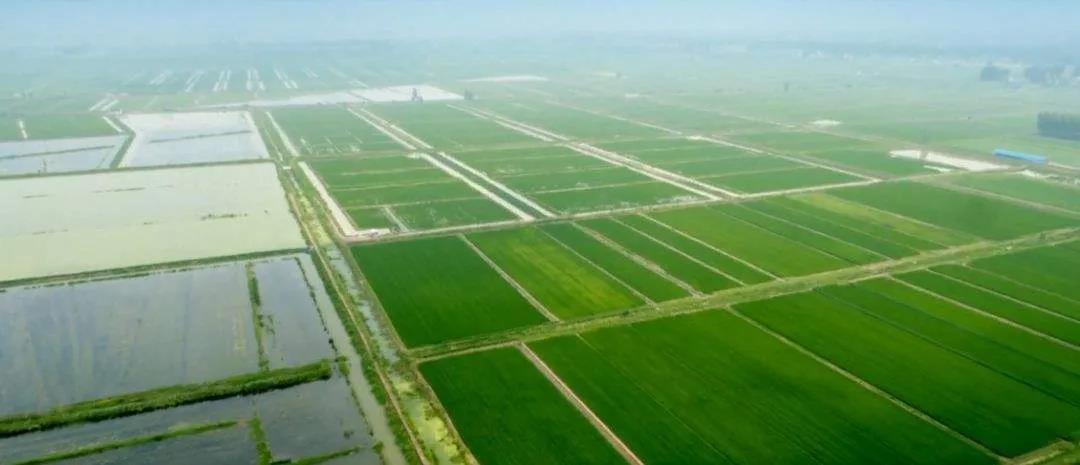 潜江:建立虾稻种养和秸秆综合利用示范基地